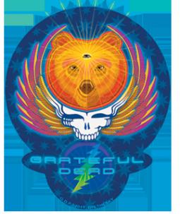 Dye the Sky Grateful Dead Rainbow Lightening Bolt 5 Circular Window Sticker//Decal